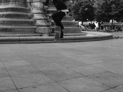 Skatefly